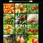 GRAB_guide_varietal_sensibilites_aux_bioagresseurs_2016
