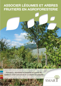 Guide technique légumes et fruitiers en Agroforesterie