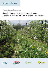 Guide bandes fleuries en verger