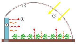 La structure de la serre capte, accumule et restitue elle-même la chaleur.