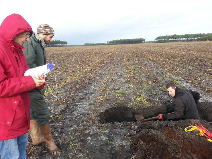 Journée portes ouvertes de la ferme pilote «légume» du projet ABSOLu