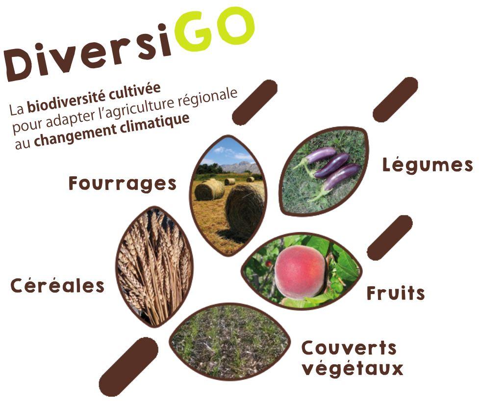 Le séminaire de lancement du projet DiversiGo ! - 25 et 26/01/21 - Forcalquier (04) et visioconférences
