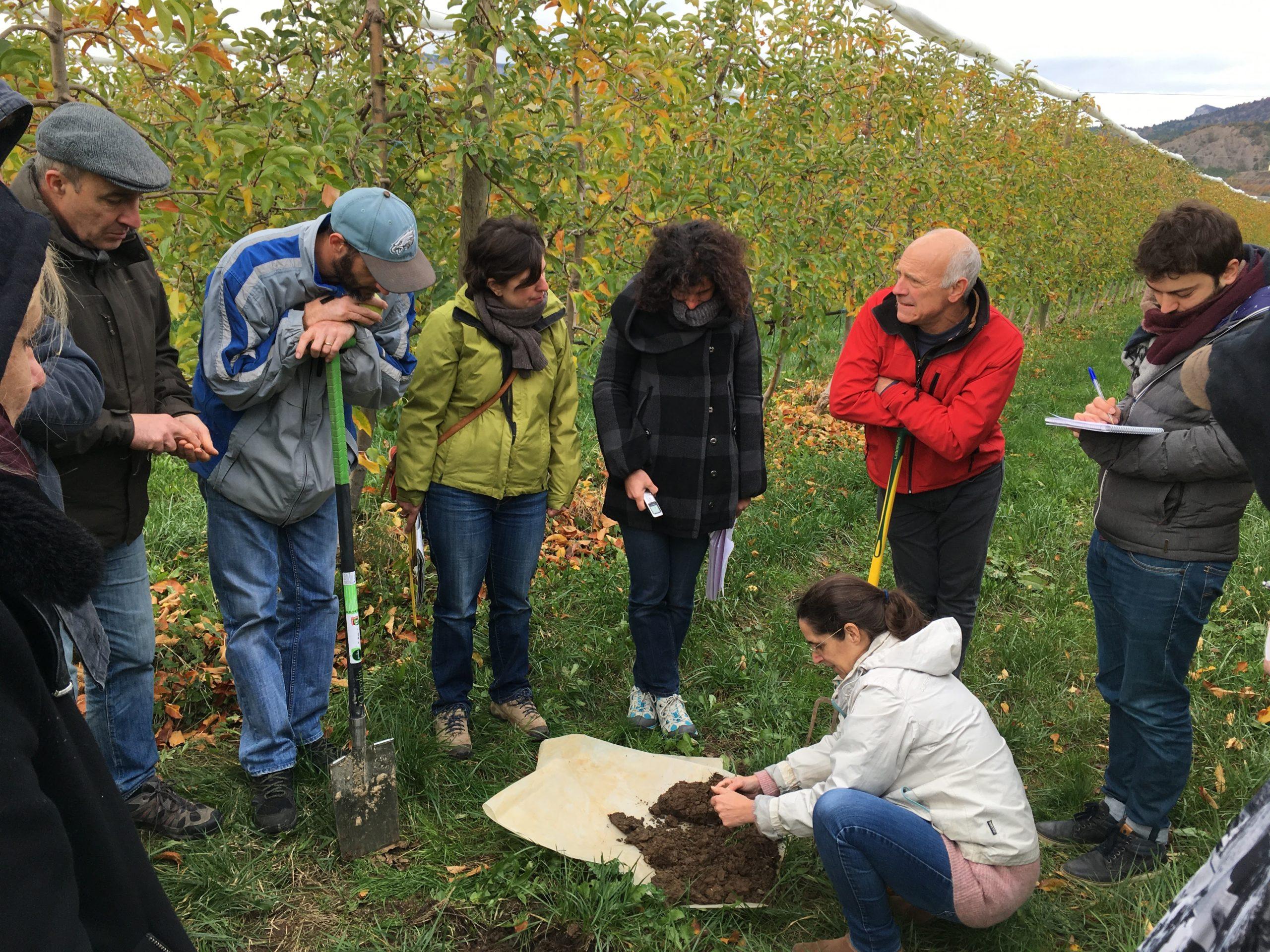 Journée portes ouvertes de la ferme pilote «fruit» du projet ABSOLu